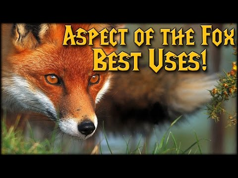 Aspect of the Fox Best Uses!