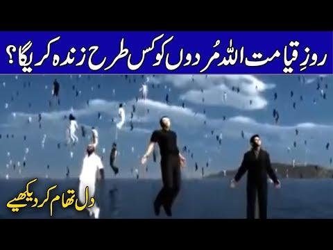 Qayamat Ka Din Aur Murdon Ka Zinda Hona ||  Rohail Voice Islamic Stories