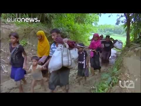 The Rohingya crisis in a nutshell!!