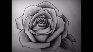 draw rose easy things drawing step