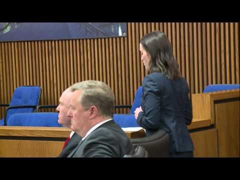 Aliza Sherman's lawyer, Greg Moore sentenced for inducing panic and falsification