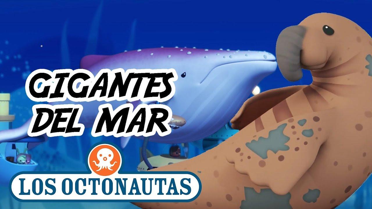 Los Octonautas - Espeluznante Gigantes Marinos   Aventuras Divertidas en el Mar