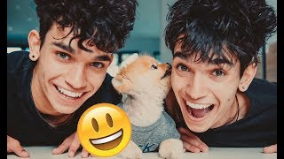 Lucas and Marcus (Dobre Twins) - Funny Moments (Best 2018★)