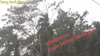 Kondisi PASCA Angin Puting Beliung Di SINGAPARNA TASIKMALAYA Jum'at 07 Desember 2018