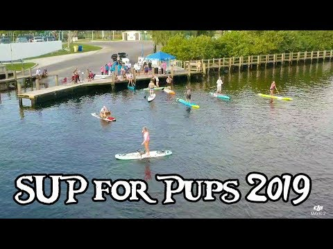 SUP For Pups 2019 Intracoastal Challenge