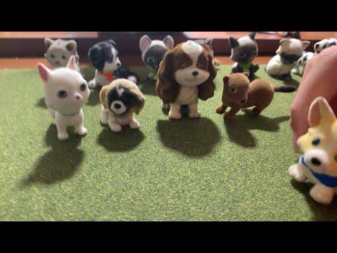 Puppy In My Pocket EBay Unboxing!