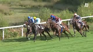 Vidéo de la course PMU PRIX MICHEL CHARBON