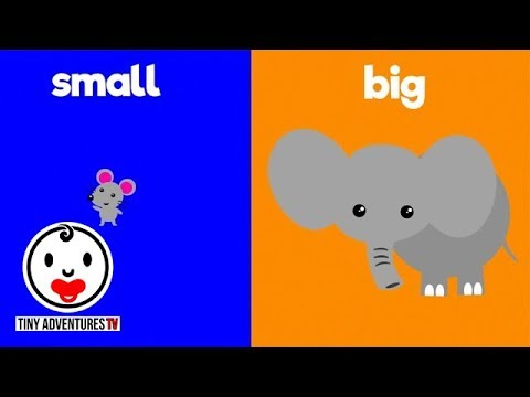 Learn Opposites | Big & Small | Simple learning video for ...