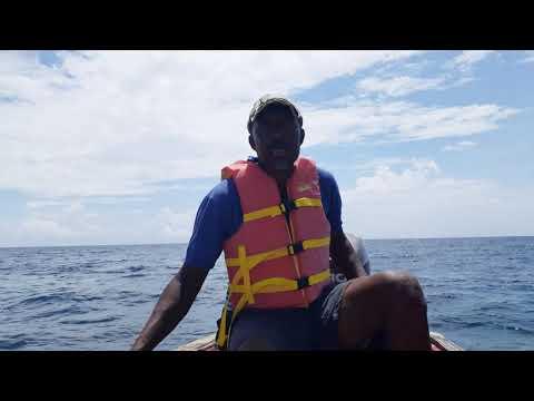 Oracabessa Fish Sanctuary In Danger