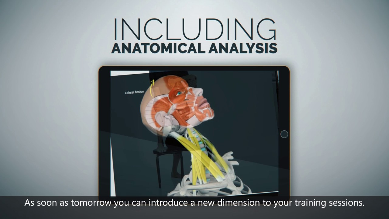 Yoga Trainers App For Next Level Yoga Sessions 3d Yoga Anatomy