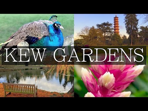 KEW GARDENS - Day Trips from Central London