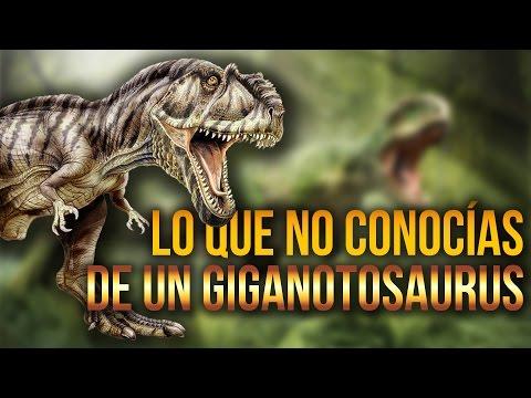 Lo que no conocías de un Giganotosaurus