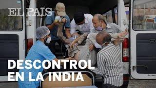 El mundo se moviliza ante el DESCONTROL del #CORONAVIRUS en la INDIA