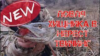 ВОБЛЕР УБИЙЦА ЩУКИ МОЯ НОВИНКА 2020 Ловля щуки на спиннинг Рыбалка 2020
