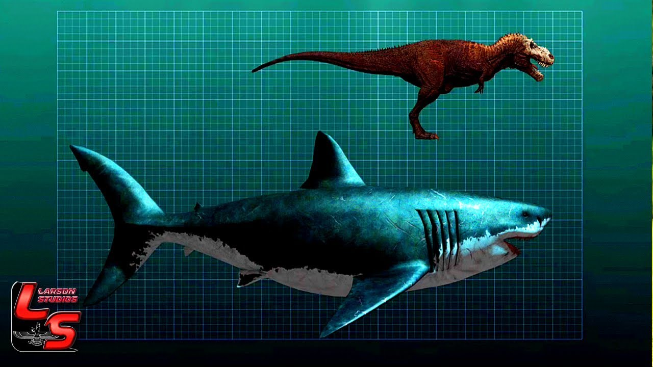 MEGALODON VS SUBMARINO NUCLEAR - LARSON STUDIOS - YouTube