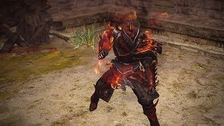 Path of Exile: Dragon Hunter Character Effect