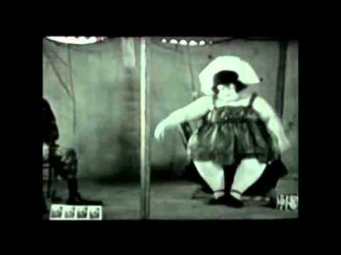 Music Video - Gecko Song