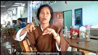 Gambar cover How to use alternative medicine at Health Farm in Thailand