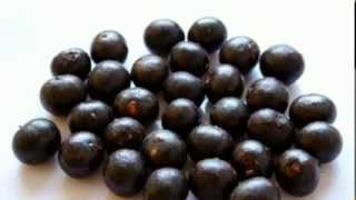 Acai Berry Weight Loss | World Wide Approved Wightloss Supplement.