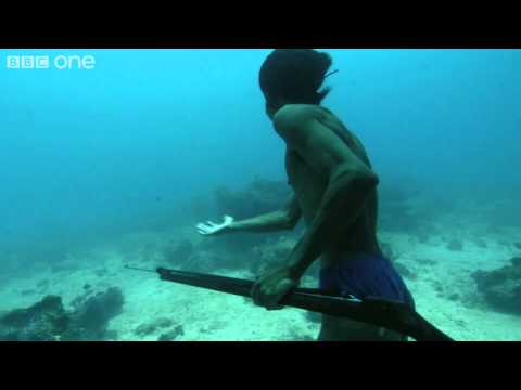 Sea Bed Hunting On One Breath - Hunter fishes underwater for five minutes
