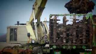 DDR Landmaschinen Miststreuen 2014 mit Z...