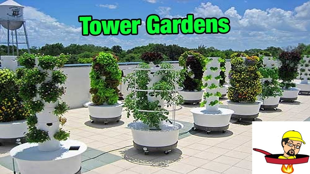 Tower Gardens FOOD GARDENING YouTube