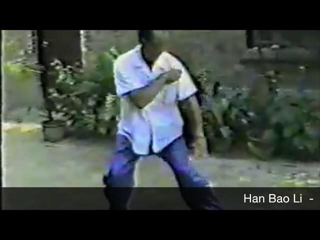 Han Bao Li - Tai Chi style Chen Xinjia Erlu (2) [陈氏太极拳新架 Taijiquan style Chen]