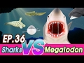 EN Megalodon Is Hunting Sharks Zebra Hammerhead Saw Great White Collecta Cocostoy mp3