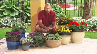 How to Decorate a Deck or Patio with Flowers