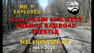 Mr. P. Explores... A Lorain and West Virginia Railroad Trestle (Wellington, Ohio)