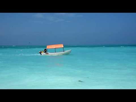 Zanzibar 2019/01 -