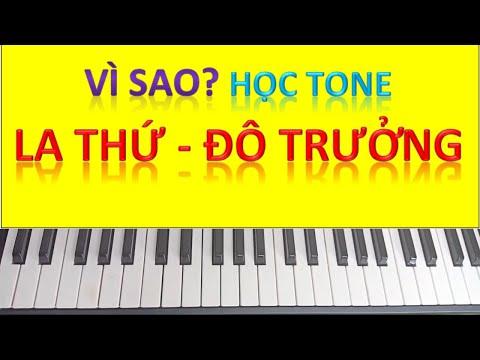 nên học guitar hay piano tại kienthuccuatoi.com