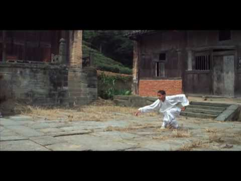 Wudang Longhuaquan (Dragon Form) Teake