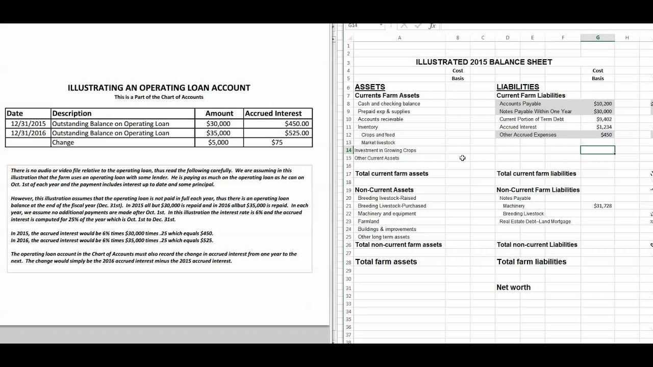 Acct Payable Notes Payable Other Accrued Expenses on Balance – Note Payables