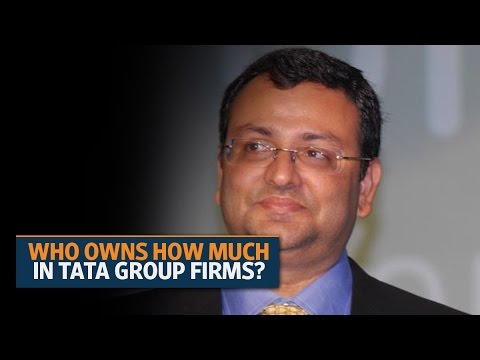Who owns how much in Tata group firms?