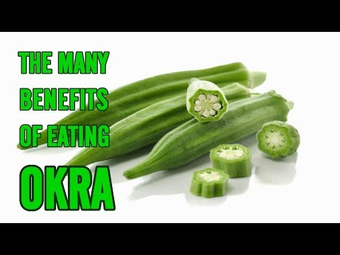 The Many Benefits of Eating Okra || Natural Health and Life