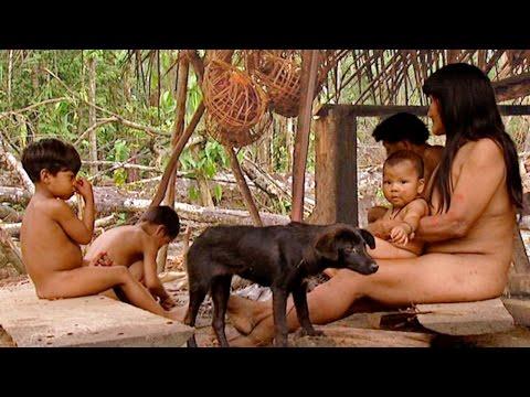 Animal Sexs Dog 3gp mp4 mp3 flv indir