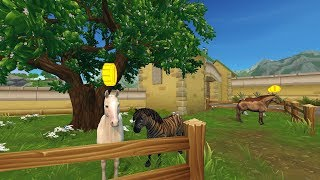 Star stable online - The updated Akhal teke horse