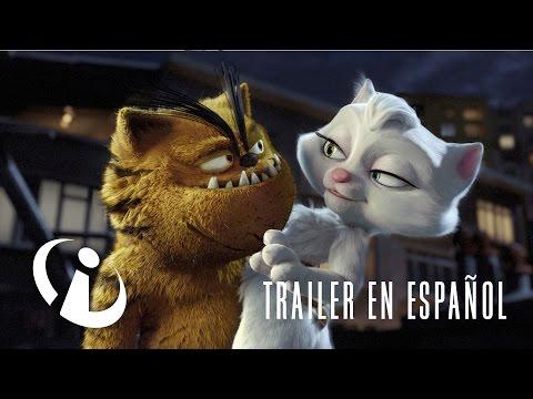 BAD CAT   Trailer oficial en español
