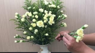Cắm hoa nghệ thuật. Cắm hoa cẩm chướng. Cắm hoa chưng Tết.