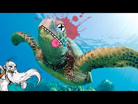 I KILLED A SEA TURTLE!!! - Let's Play Landless Gameplay