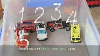 Ka Rawe te Kaute - Counting is Fun