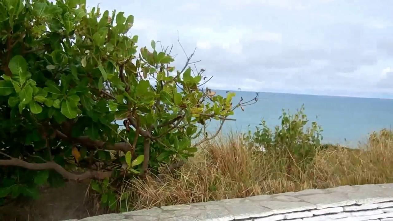 Passeio na Praia de Tambaba Litoral Sul Pb