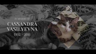 THE FRANZ KAFKA VIDEOGAME - Ending & Credits
