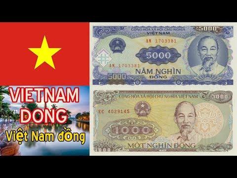 New Vietnamese 1000, 5000 Dong