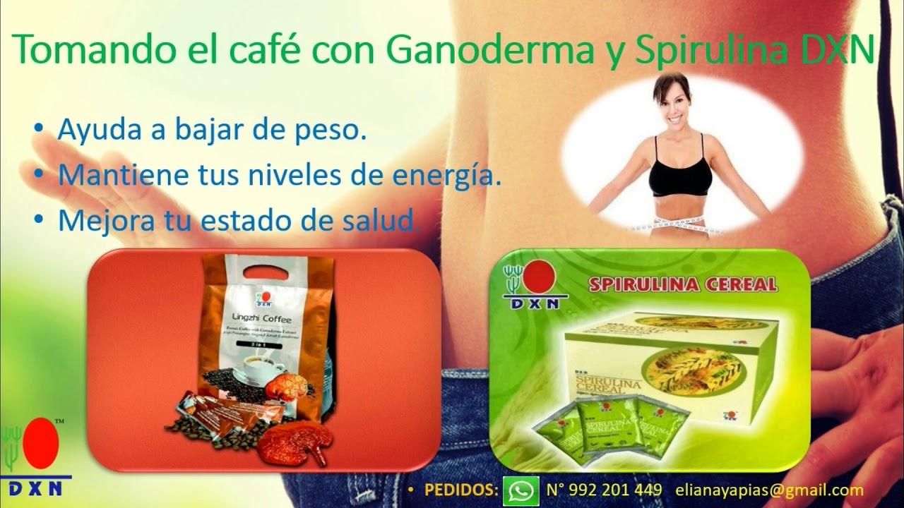 Cafe ganoderma bajar de peso