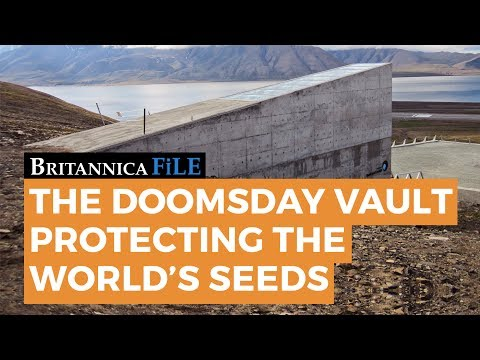 The Arctic Doomsday Vault Protecting the World's Seeds