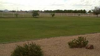FOR SALE! Buckeye, Arizona - ten acres - 19829 West Lower Buckeye Road