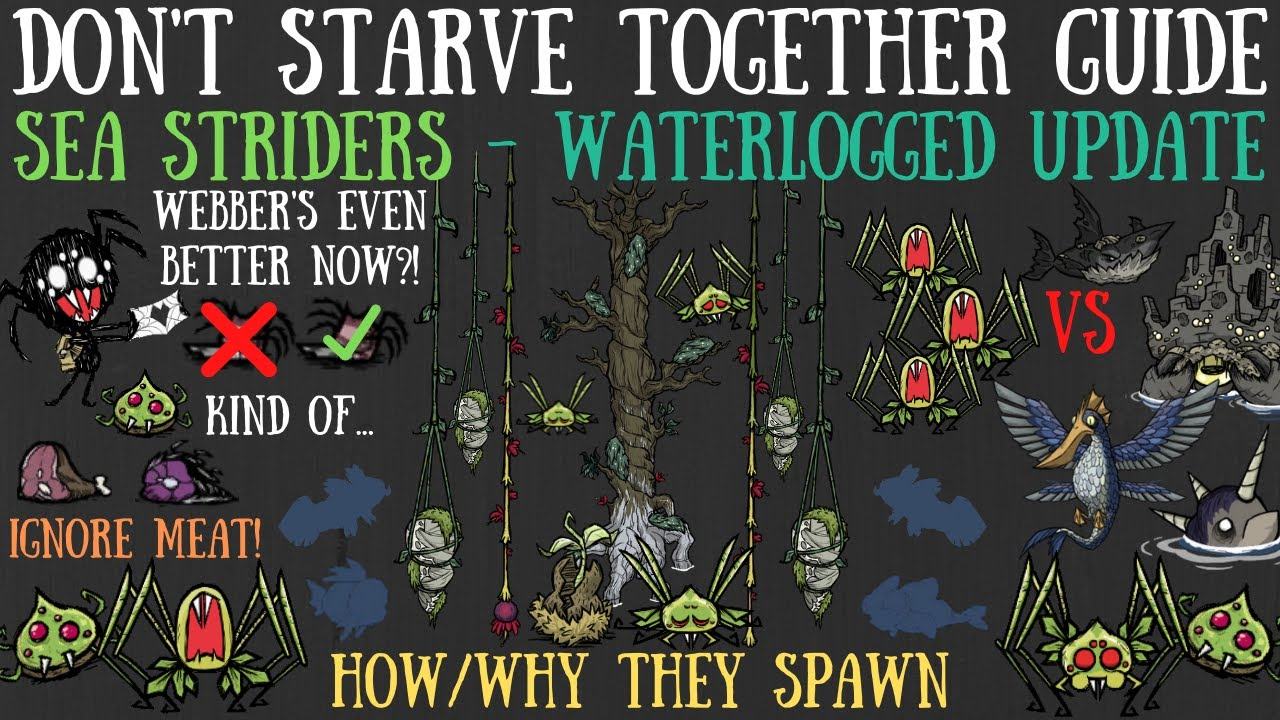 Don't Starve Together Guide: Sea Striders - NEW Waterlogged Update - NEW SPIDERS VS THE OCEAN [BETA]