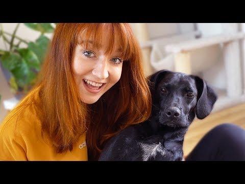 Das ist mein Hund, Clarissa!